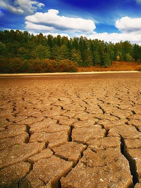 El cambio climático será  'letal' para nuestra salud