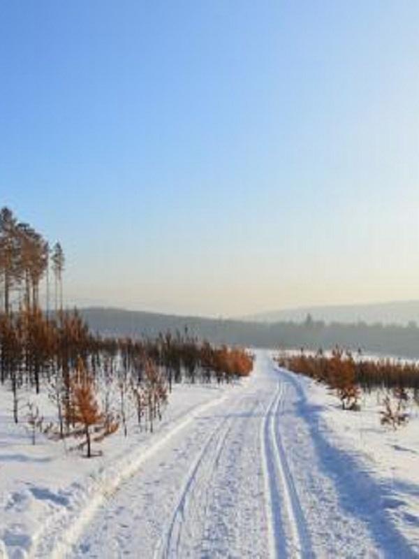 Siberia tendrá un clima agradable para vivir a fin de siglo