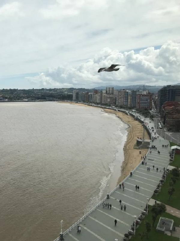 Asturias. La peligrosa contaminación química de la bahía de Gijón