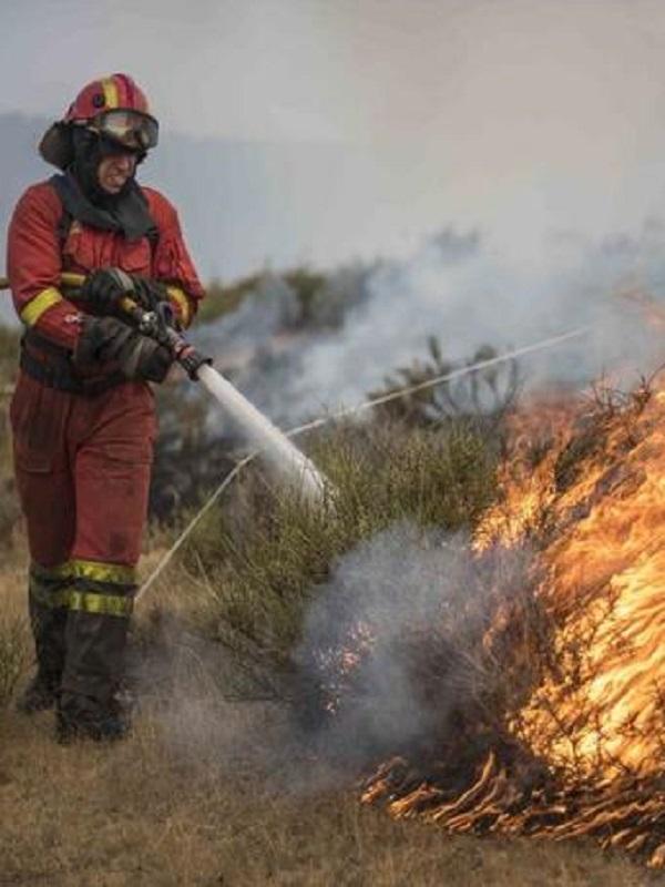 La Comunidad de Madrid registró un total de 255 incendios forestales