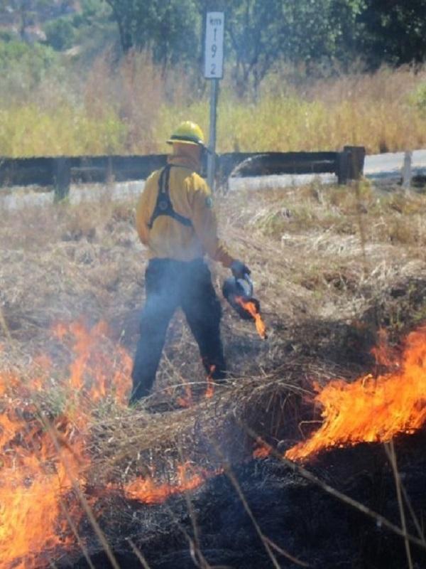 California cortará la electricidad a 27.000 personas para reducir el riesgo de incendios forestales