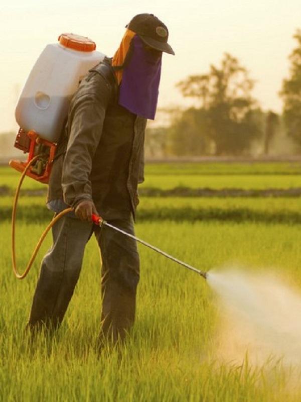 En la Comunidad de Madrid exigen medidas preventivas para evitar el uso de pesticidas