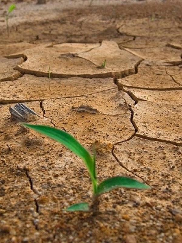 El cambio climático incrementará los conflictos armados