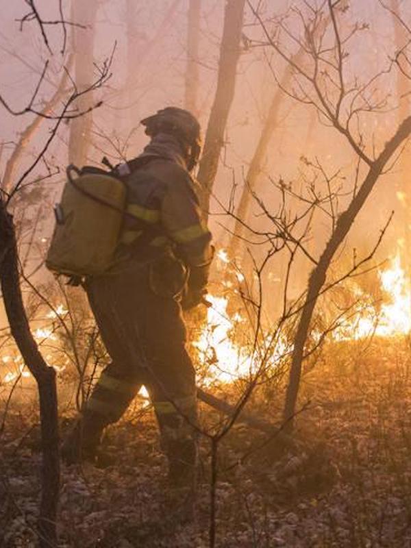 Luz verde al plan de lucha contra incendios forestales 2019