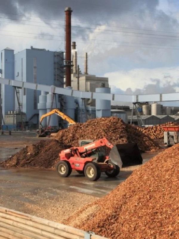 La planta de 46 MW con biomasa de Ence en Huelva inicia última fase de pruebas para su puesta en marcha a final de año