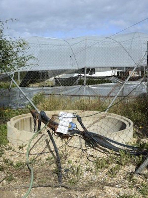 Ecologistas apoya a la CHG y exige que se cumpla la ley para el cierre de pozos ilegales en Lucena (Huelva)