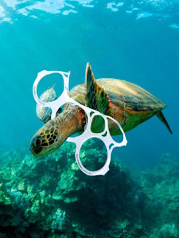 La Fundación Reina Sofía analizará el impacto de la basura en tortugas marinas en colaboración con proyecto LIBERA