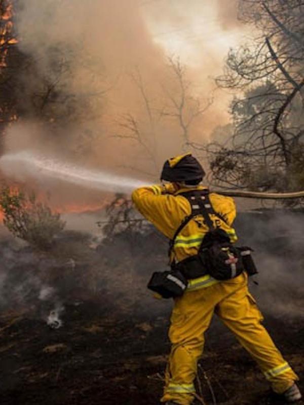 El fuego arrasa 38.023 hectáreas este año hasta el 16 de junio, cuatro veces más que en 2018