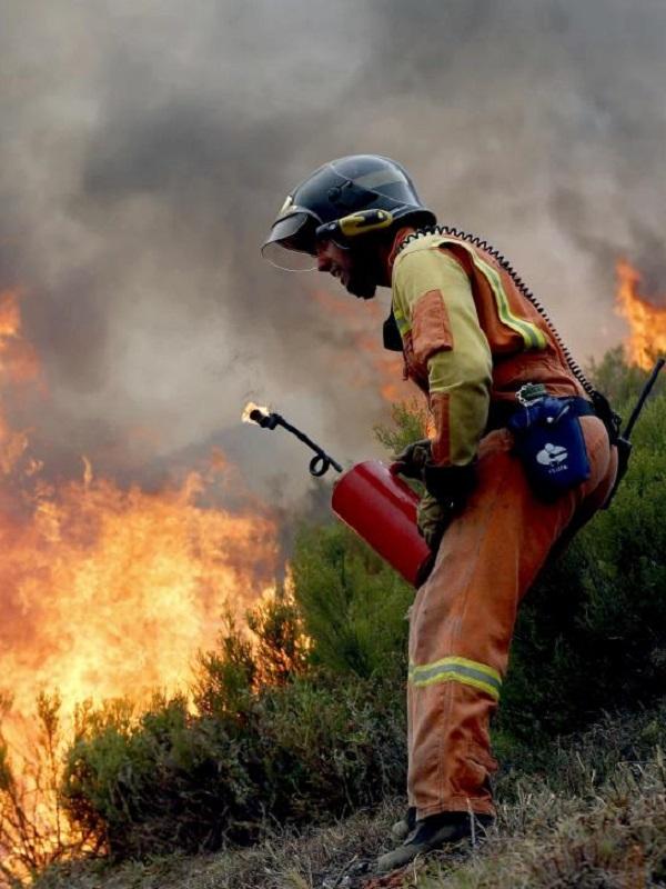 Asturias. No se pueden permitir mas oleadas de incendios provocados como los que estamos viviendo