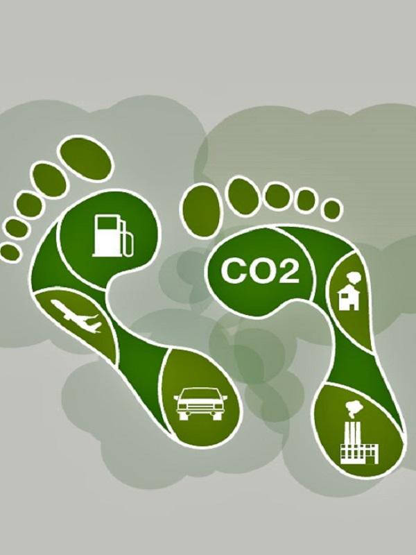 Expertos mundiales reclaman a las grandes ciudades atajar la huella de carbono