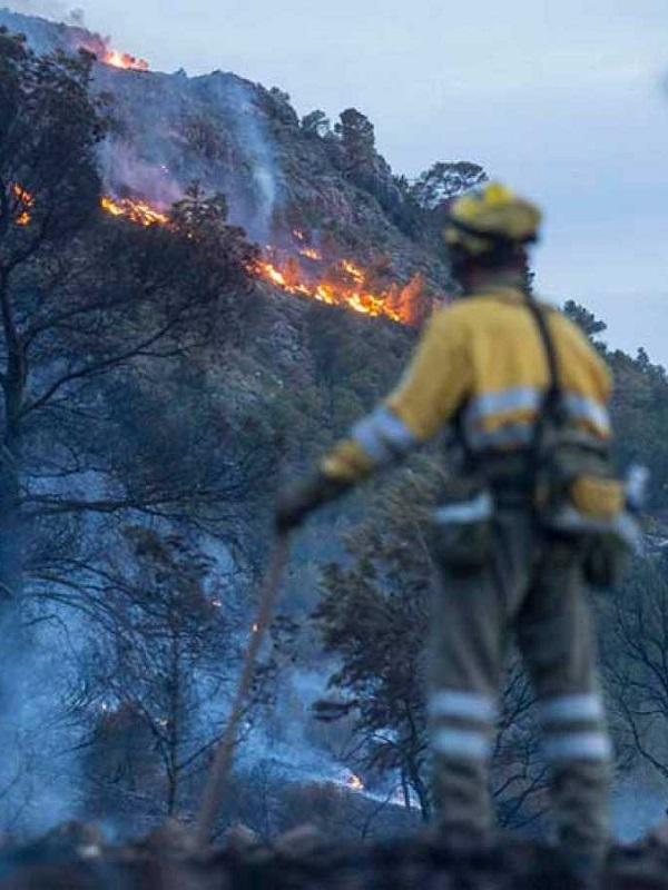 Tres denunciados por el incendio forestal que arrasó 120 hectáreas en un paraje de Moguer (Huelva)