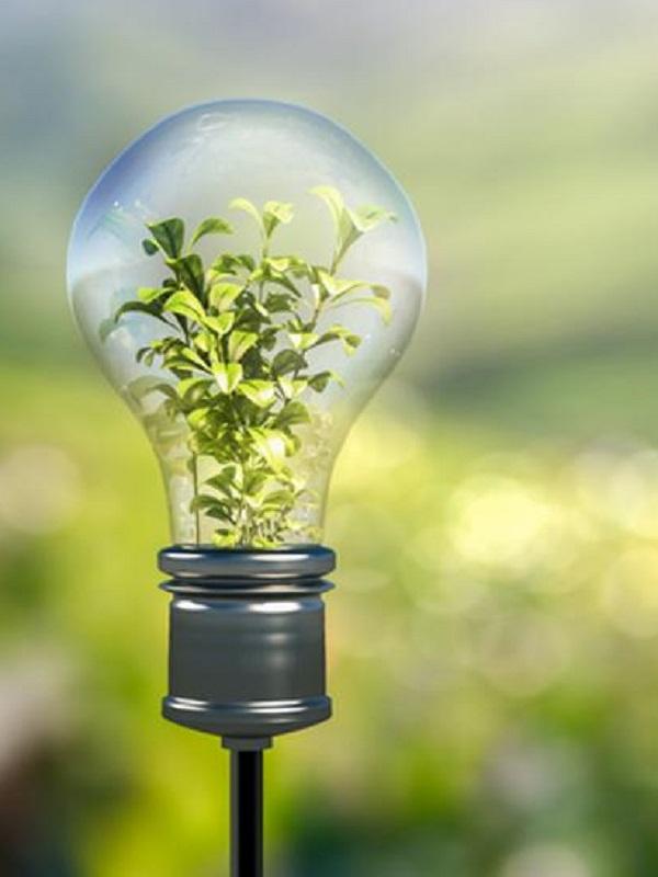 La transición energética será desde la ciudades