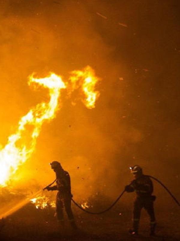 Reflexiones sobre los incendios en el norte de España