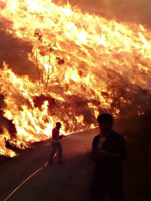 Asturias. Hay que acabar con la impunidad de los que prende fuego al monte todos los años
