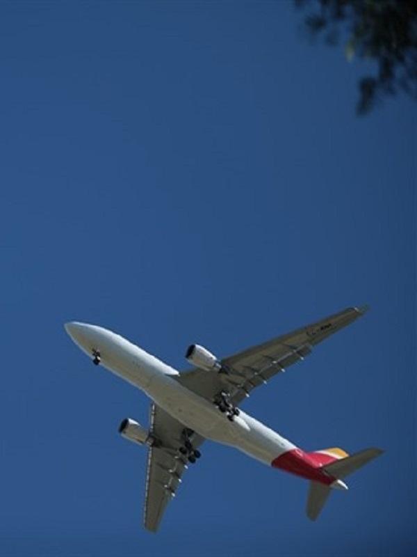 Las aerolíneas claman por combustibles sostenibles