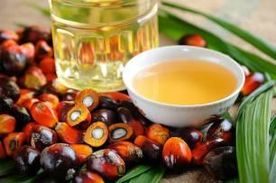 Tres cuartos del aceite de palma que usa la industria alimentaria en Europa está certificado