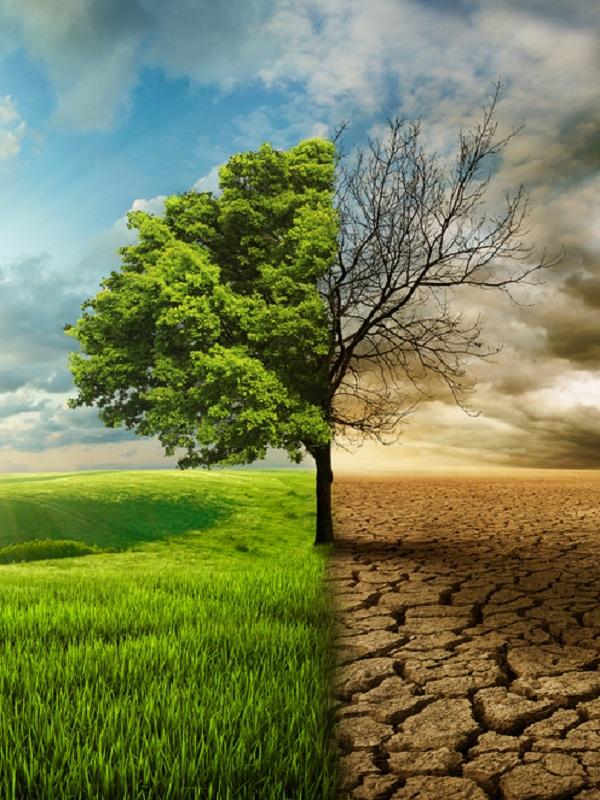 NESI Global Forum muestra las soluciones de la nueva economía para frenar el cambio climático