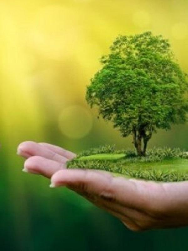 Revelan el papel de 62 elementos móviles del ADN en la adaptación al ambiente