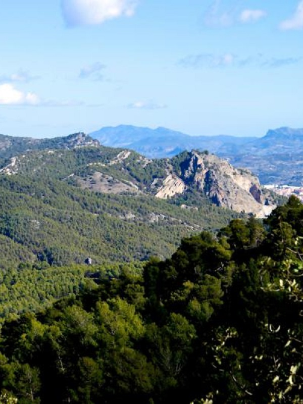 Los Parques Naturales de la Comunitat Valenciana celebran el Día de la Mujer con actividades divulgativas y marchas