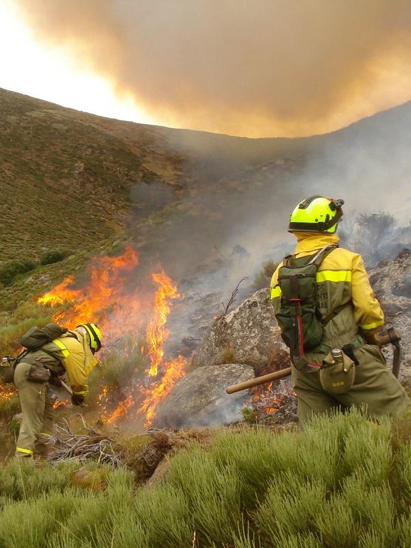 Ingenieros forestales apuestan por la ordenación del territorio y el cambio de las ayudas de la PAC contra los incendios