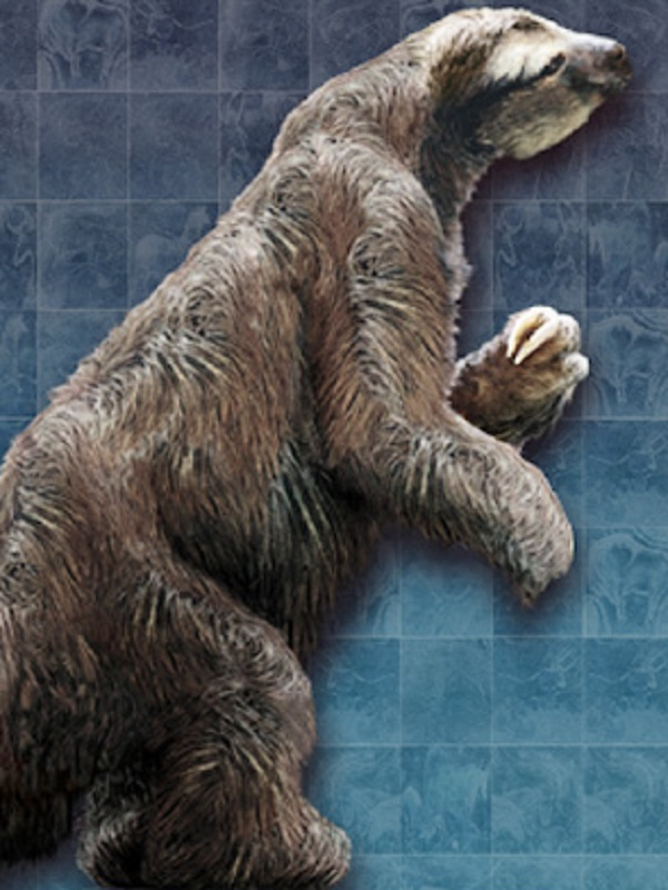 La extinción del perezoso gigante tiene explicación y no te gustará