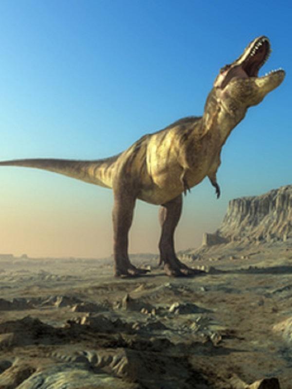 Descubrimiento sobre los dinosaurios