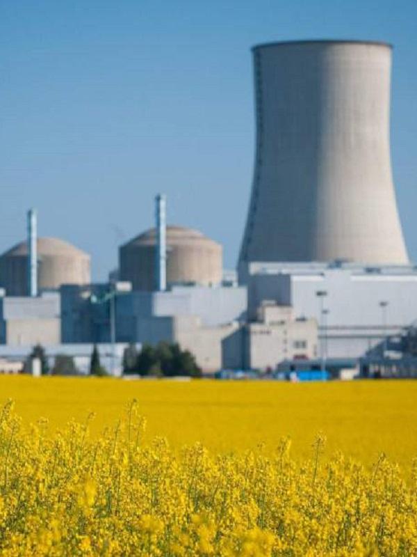 La gran estupidez de ampliar la vida de las nucleares