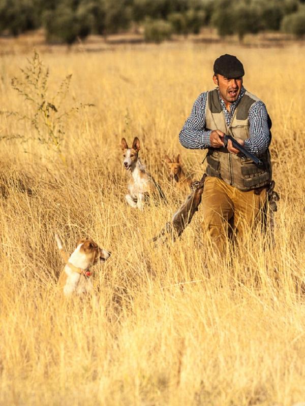 La mayoría de accidentes de menores con armas de fuego están relacionados con la caza