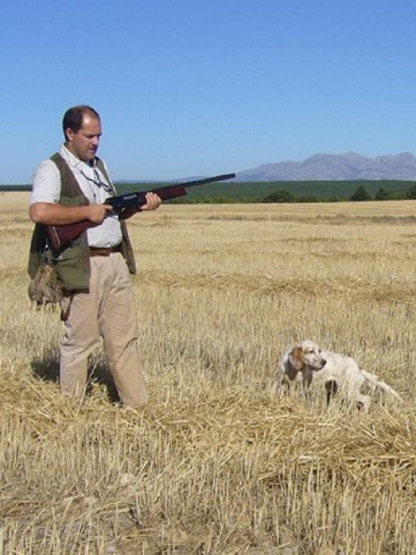 Para tirar cohetes, los veterinarios de Castilla y León se posicionan a favor de la caza