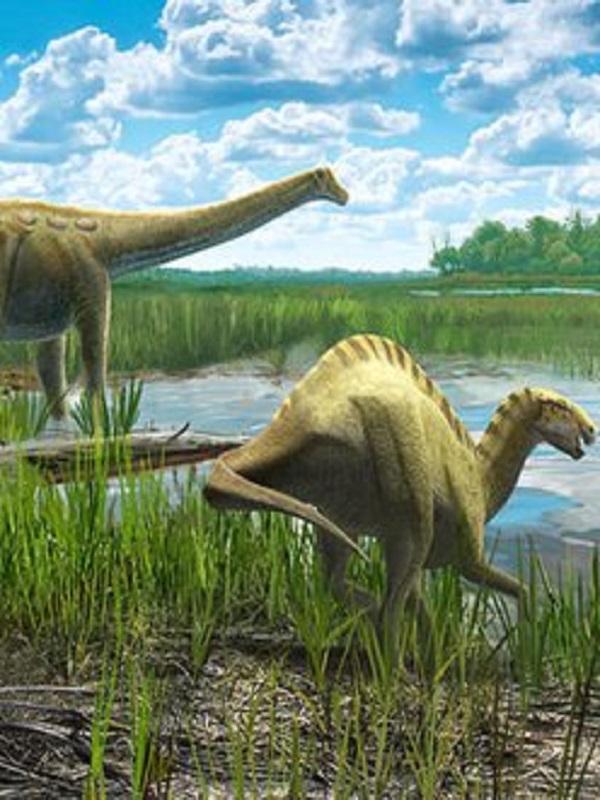 Un dinosaurio del tamaño de un ualabí