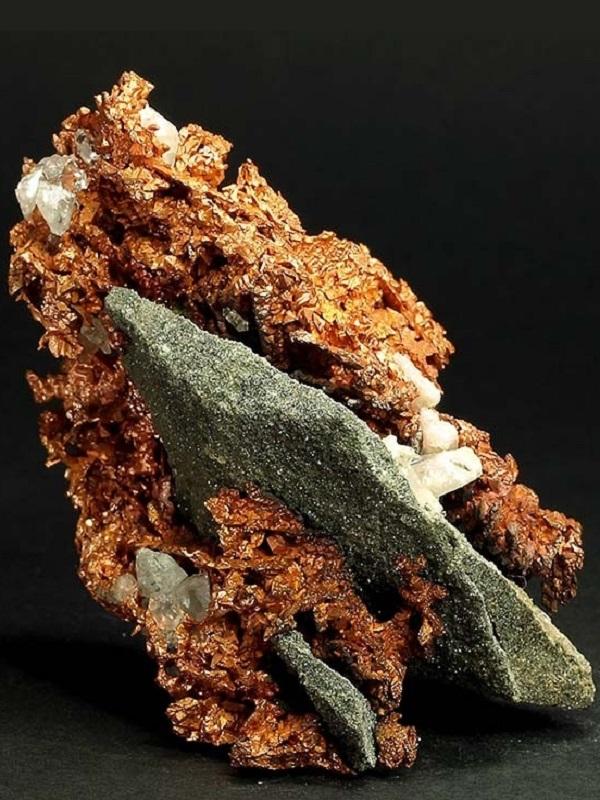 Un mundo lleno de cobre ayudó a los animales a colonizar la Tierra