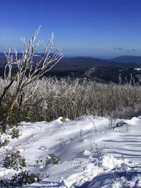Bye, bye al invierno en Australia