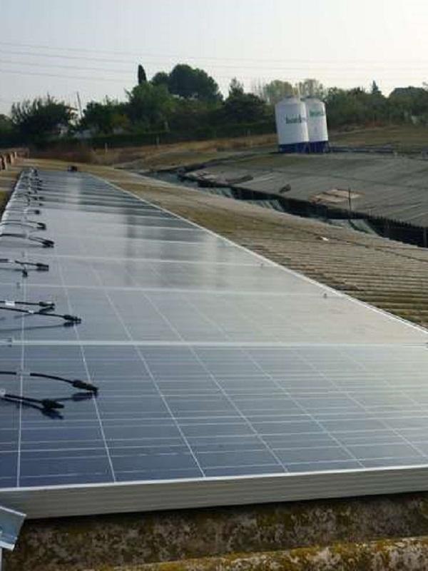 La UMU amplía su producción de energía solar fotovoltaica con una instalación en la granja veterinaria