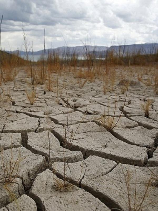Los modelos climáticos están subestimando las olas de calor