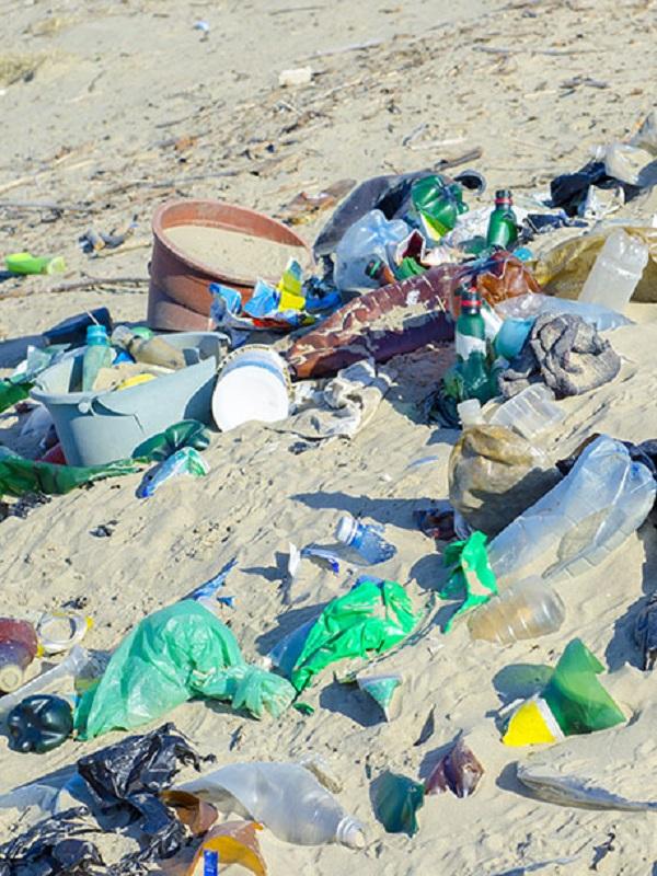 Voluntarios de Greenpeace denuncian la contaminación de envases de plástico en una recogida en cuatro provincias