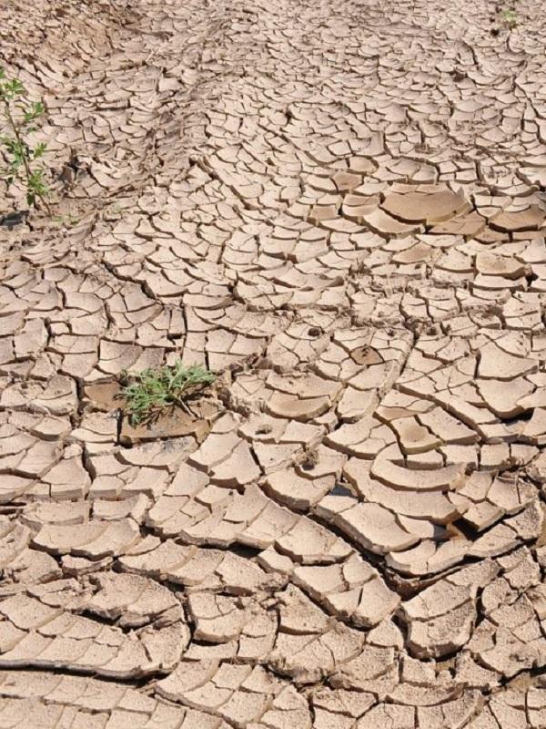 La Ley andaluza de cambio climático suspendería en París