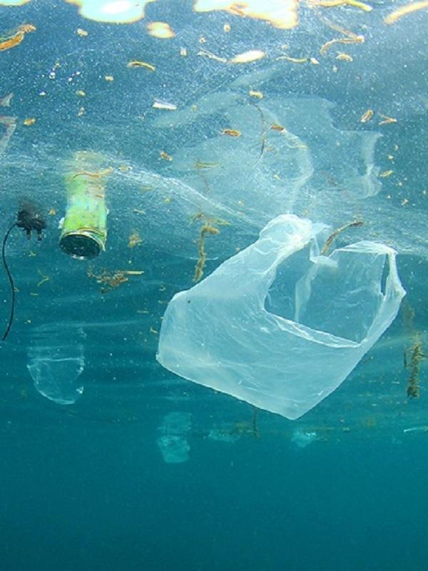 Estrepitoso fracaso en la lucha contra el plástico del finalizado Foro de Naciones Unidas