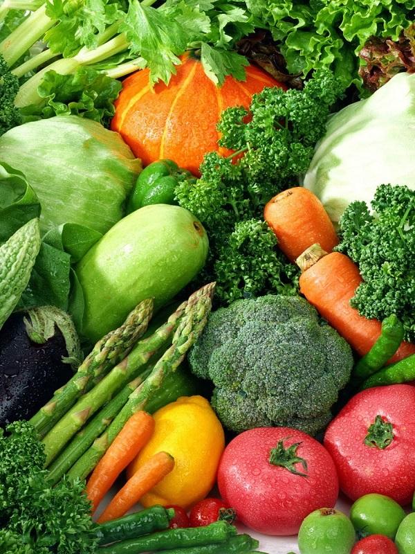 Día 20 sin carne. El monocultivo de soja se expande también en Europa como alimento de la ganadería industrial