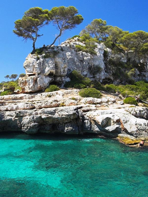 Nace una WEB  sobre la riqueza natural de las Islas Baleares