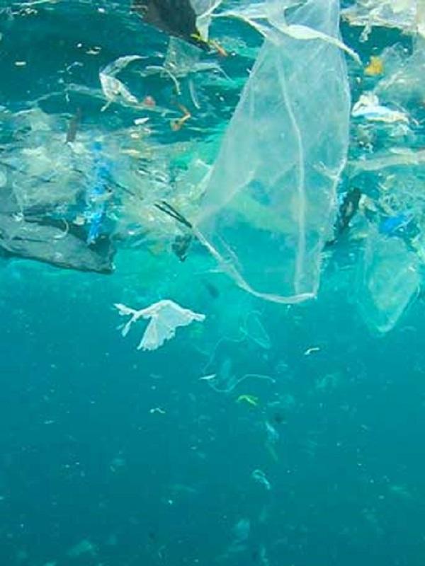 Europa ve prioritario atajar la basura marina y la gobernanza de los océanos