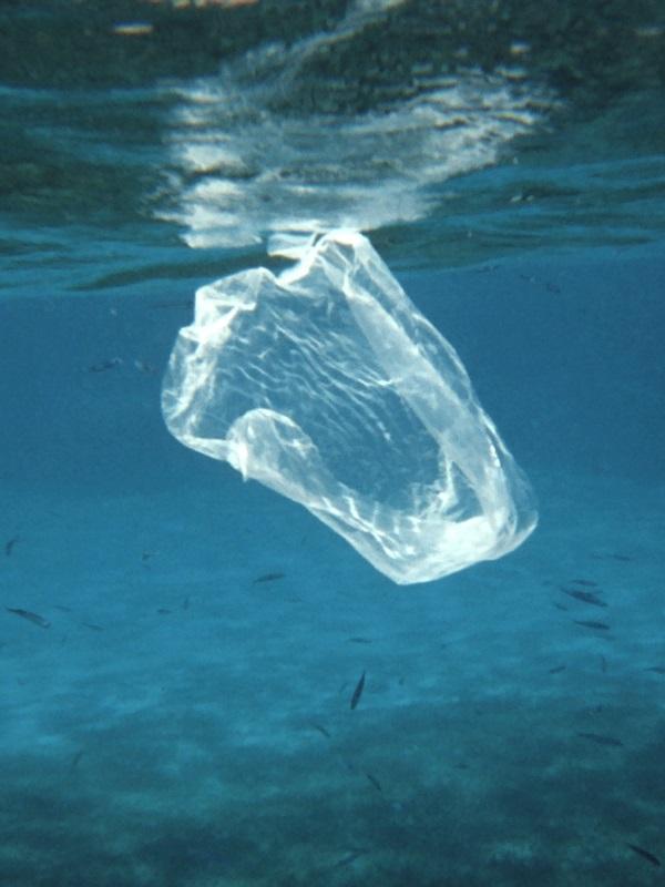 Ecoembes y Fundación Ecoalf unidas por dejarnos un mar mas limpio