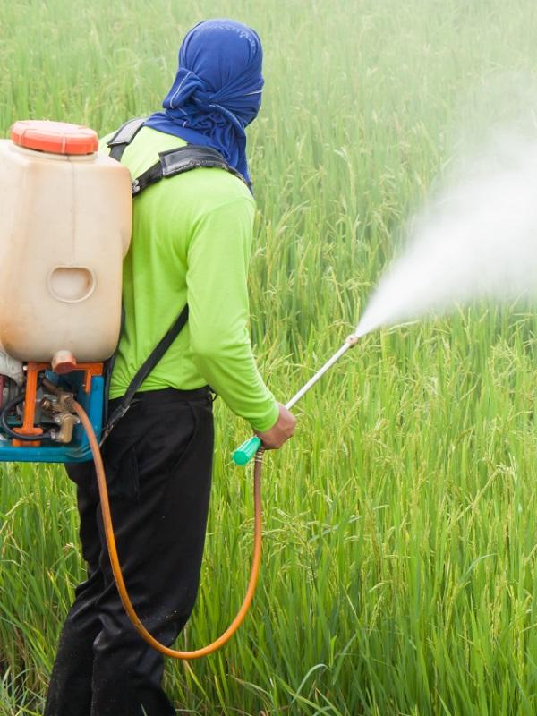 Reducir el uso de pesticidas es un deber y obligación