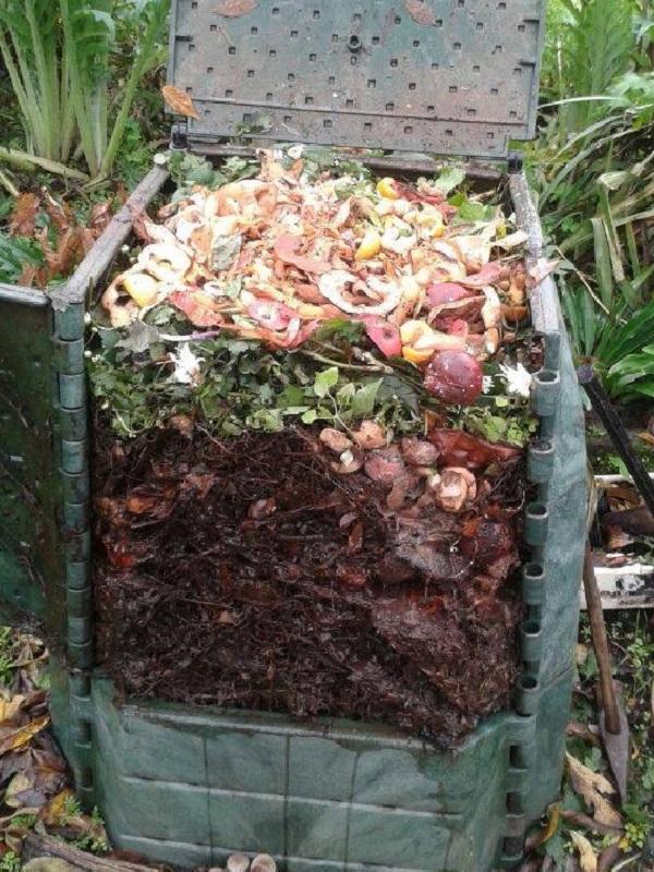 Galicia. Frades se suma al programa de compostaje doméstico de Sogama