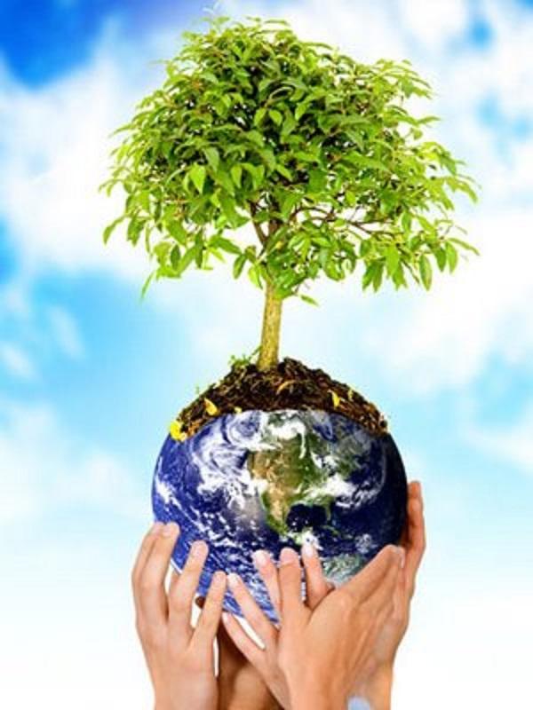 Los partidos políticos españoles pueden y deben contribuir  a la preservación del Planeta