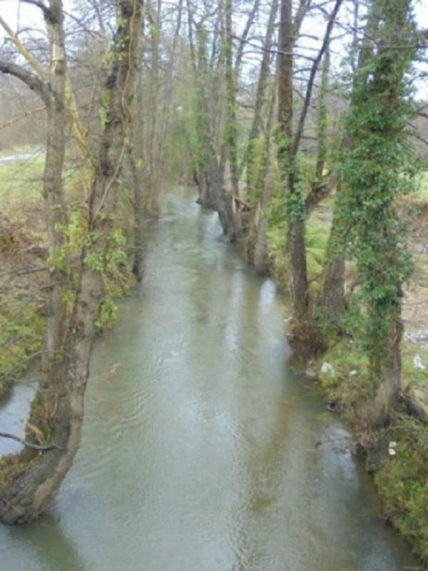 Asturias. Escalas taponadas río Esva