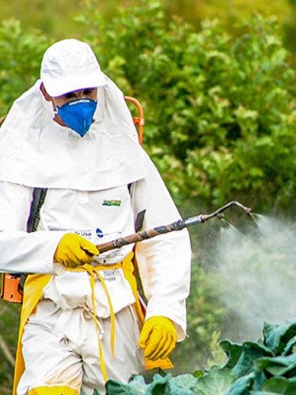 Pesticidas, todo son problemas