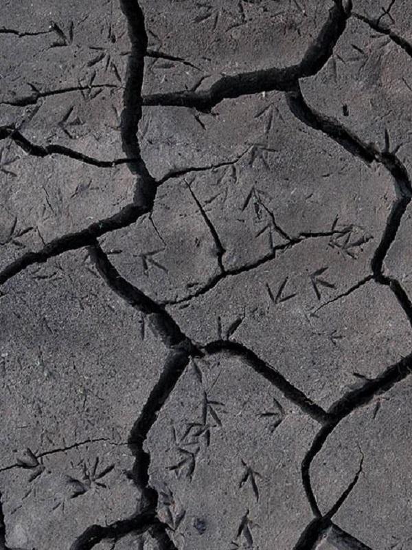 España vs Día Mundial del Agua