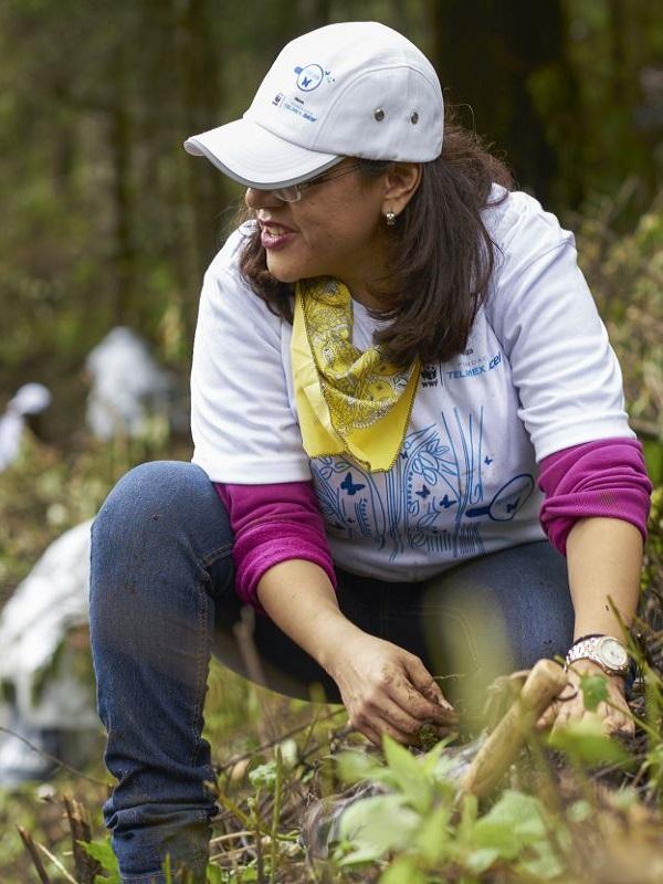 Ponen en marcha la VIII Jornada de Bosques BBVA con una reforestación en la reserva de la biosfera de Urdaibai