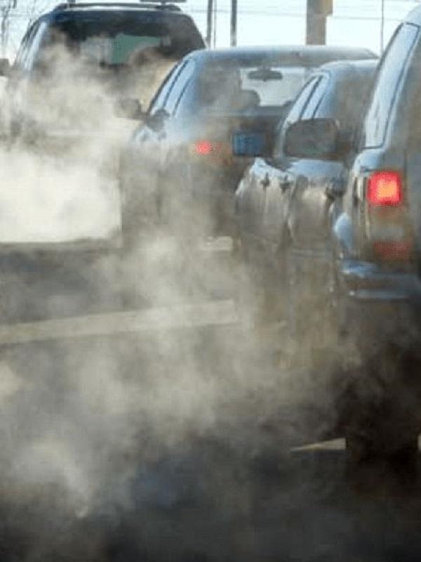 Una nueva Estrategia Calidad del Aire, 500.000 árboles y 100 parkings disuasorios, propuestas medioambientales de Ayuso