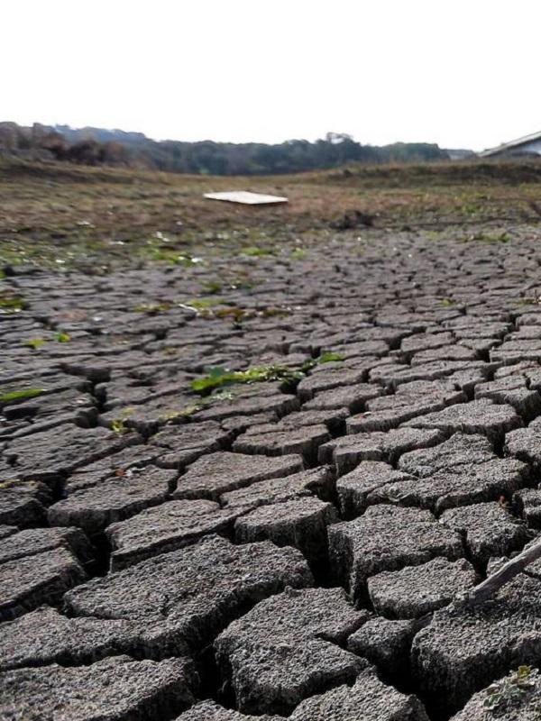Científicos ven huellas del calentamiento en sequías que se remontan a 1900